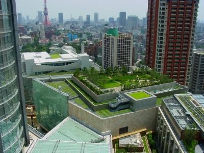 Toit végétal sur un bâtiment