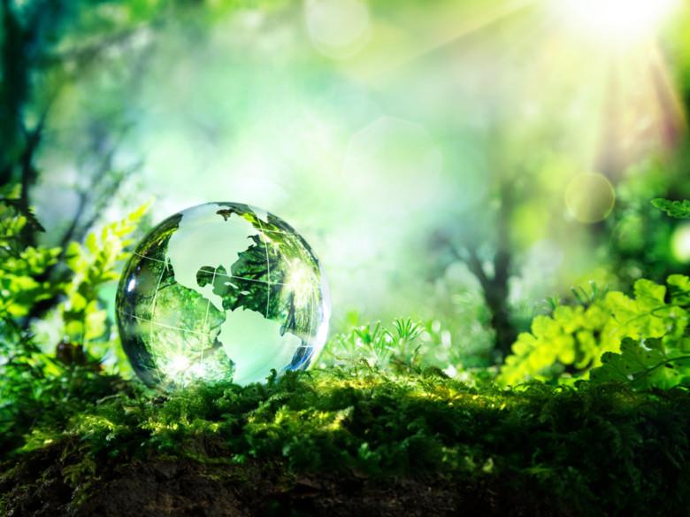 rendre sa maison écologique