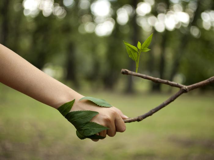 Être écologique au quotidien
